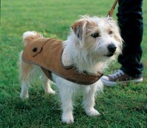 tweed-coat-opener