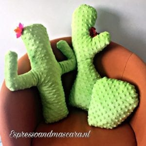 Cactus Pillow FREE Pattern