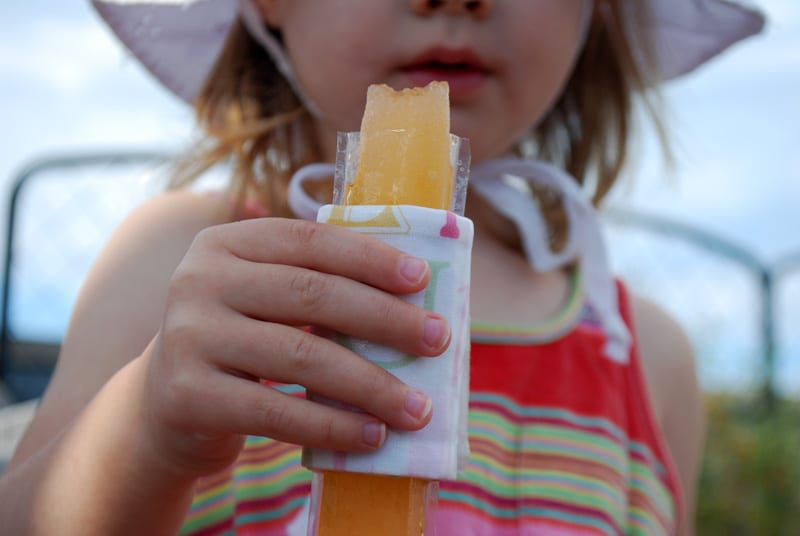 Insulated Holder for Stick Popsicles