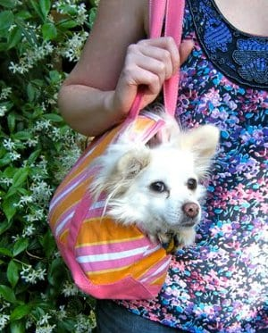 Doggy Tote FREE Sewing Tutorial
