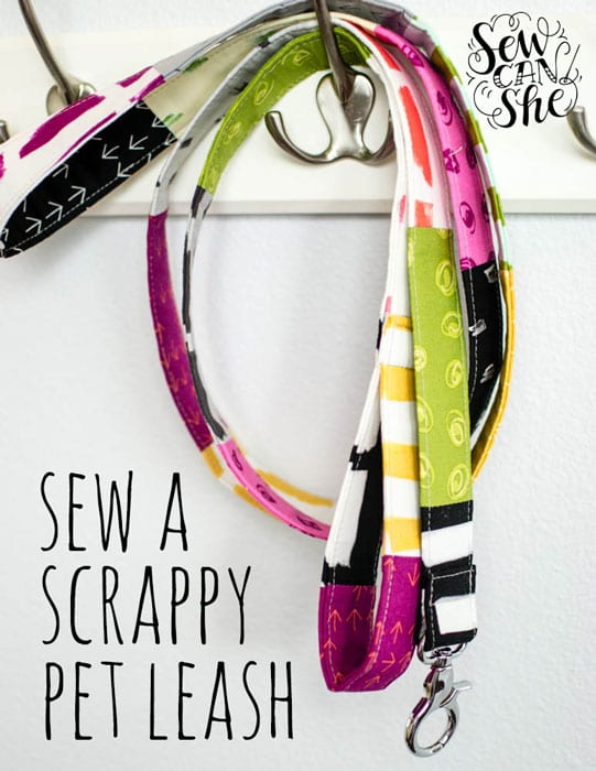 Scrappy Pet Leash
