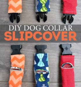 Dog Collar Slipcover