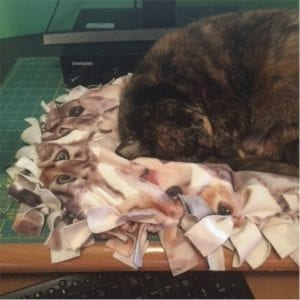 Cat pillow free sewing tutorial