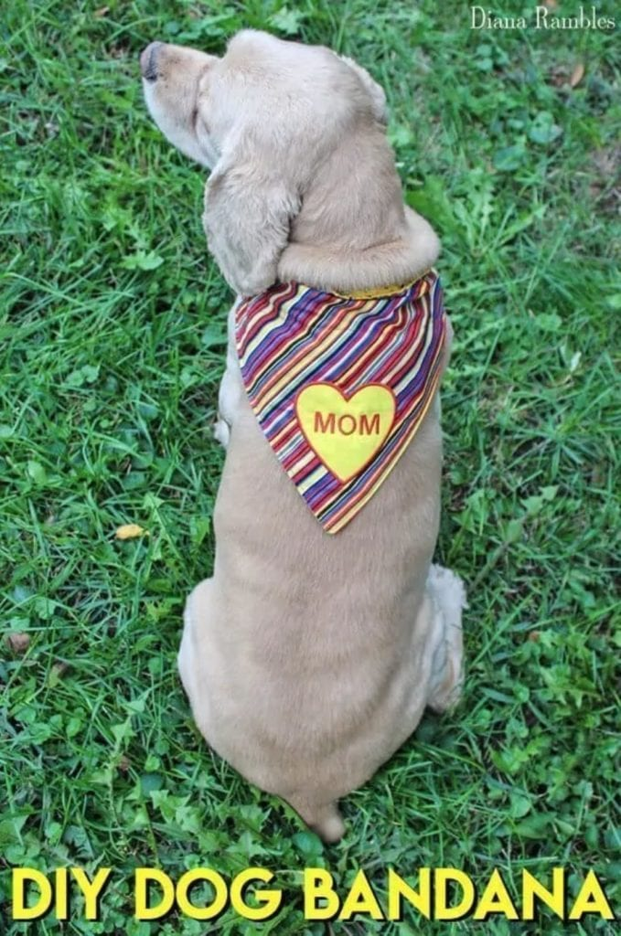 Dog Bandana FREE Sewing Tutorial