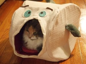 Cat House Free Sewing Pattern