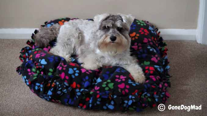 DIY Dog Bed FREE Sewing Tutorial