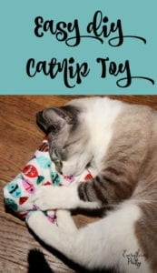 Catnip Toy FREE Sewing Tutorial
