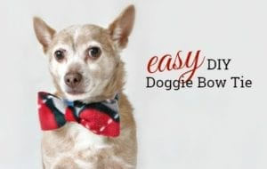 DIY Doggie Bow Tie FREE Sewing Tutorial