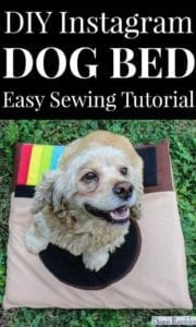 Instagram Dog Bed FREE Sewing Tutorial