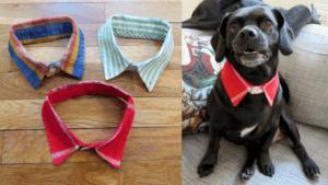 Doggie Dress Shirt Collar FREE Tutorial