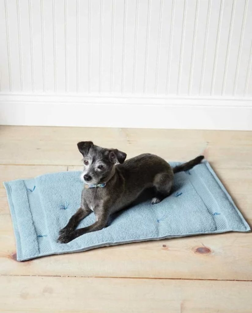 Cozy Travel Cushion for Pets FREE Tutorial