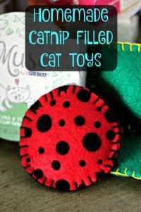 Catnip Filled Cat Toys FREE Sewing Tutorial